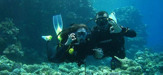 Aquanaut Diving Club : the wonderfull red sea with my fiance