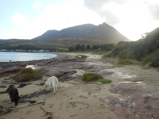 Darven Cottage B&B Sannox, Isle of Arran: Walking the resident dogs on the beach at the bottom of the garden