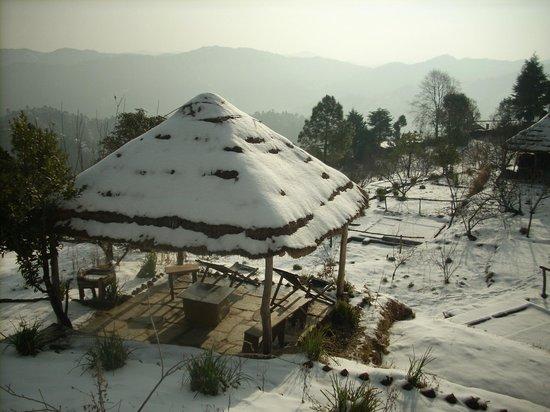 Mukteshwar, India: Camp Purple in Winter