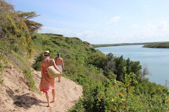 Mike's Camp, Kiwayu Island: Walking creekside