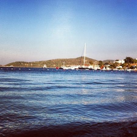 ATILAY: near the sea