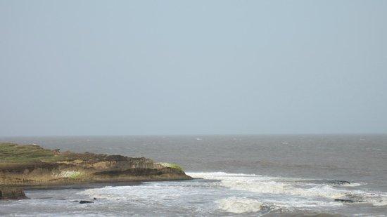 Hotel Palms: The Sea