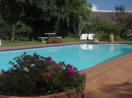 Ascot Inn: Swimming Pool