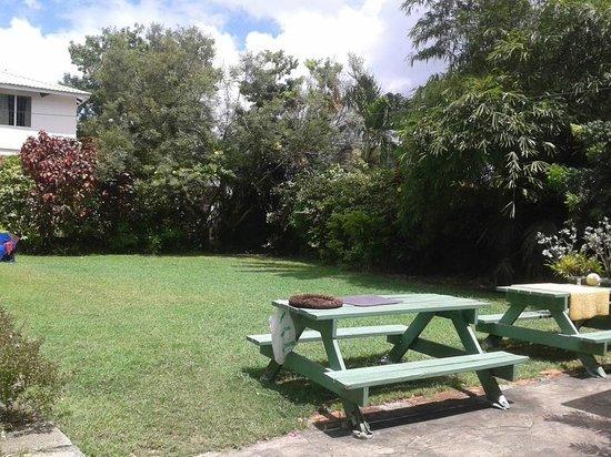 Angler Apartments: garden