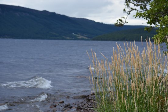 Balachladaich Loch Ness B&B : A view out onto the water