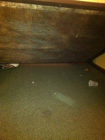 Sea Spiral Suites: crumbs and trash under bed