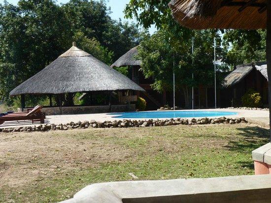 Mushroom Lodge: Pool