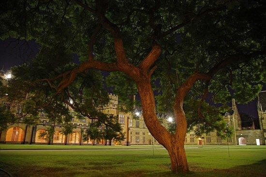 aim university sydney my writing