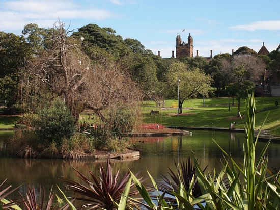 University of Sydney: Victoria Park with Lake Northam in the foreground