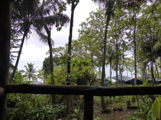 La Leona Eco Lodge: Het uitzicht vanuit de hut