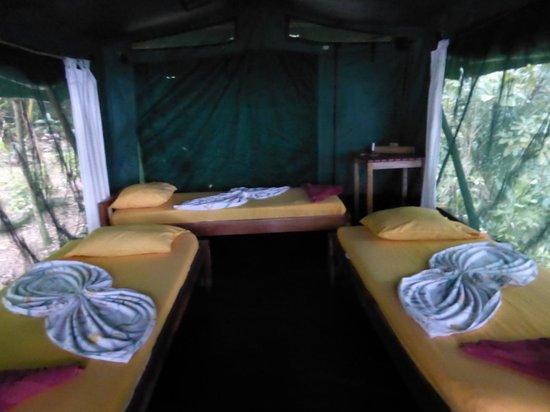 La Leona Eco Lodge : De binnenkant van de hut