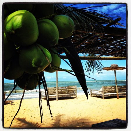 UXUA Casa Hotel & Spa: BEACH VIEW