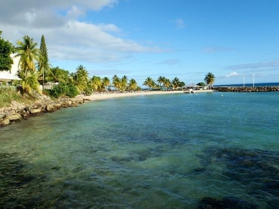 La Creole Beach Hotel & Spa: plage de l'hotel creole beach
