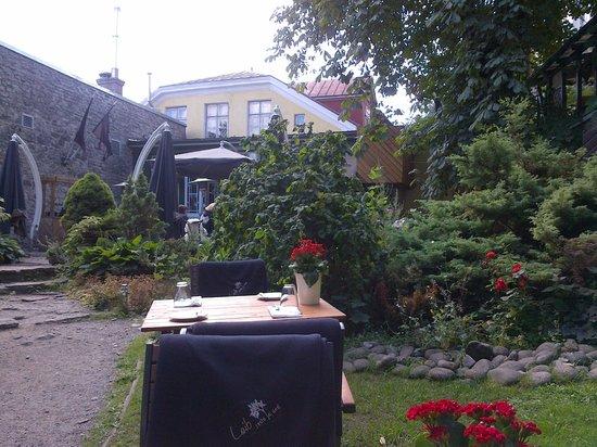 Leib Resto ja Aed: Чудесная летняя площадка