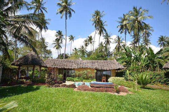 Zanzi Resort : villa