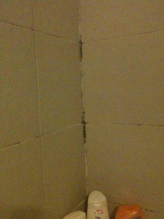 Roussos Beach Hotel: contorno vasca, doccia da fare con le infradito nella vasca