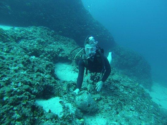 Octopus Diving Center: Sunken treasure