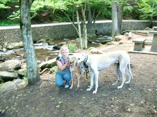 Me and the dogs at Mynatt Park