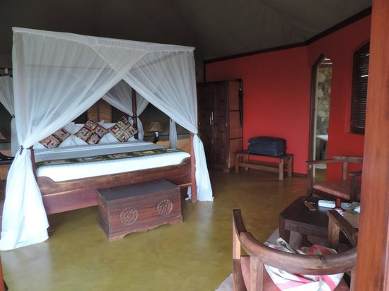 Serengeti Simba Lodge : Our room