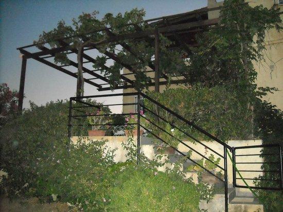 Villa Fleria Seaside Studios & Apts: Ο προσωπικός χώρος του ιδιοκτήτη!