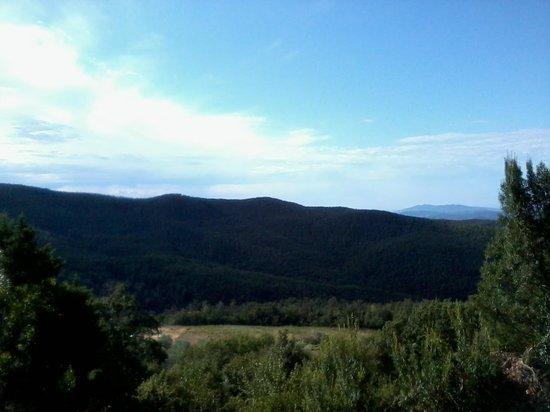 Villa Tatti: Panorama dal giardino