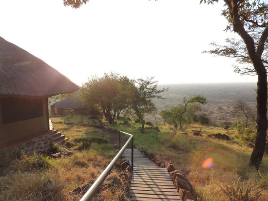 Serengeti Simba Lodge : Leading up to our room..