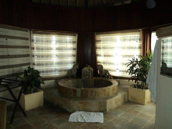 Dewani Villa : Bath