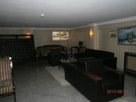 Hotel Pamphylia : зона отдыха.Имеется комппьютер. Можно без проблем зайти в интернет