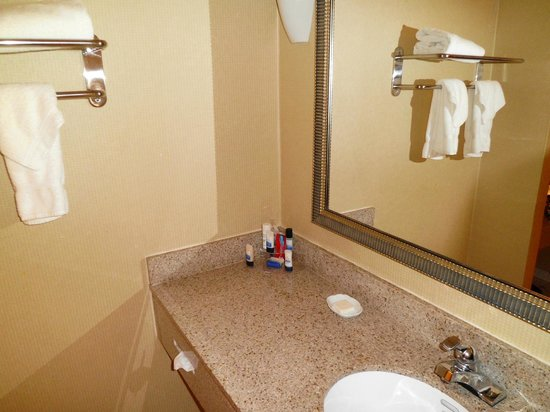 Best Western Plus Hotel & Conference Center: bathroom
