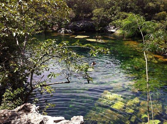 Coconut Divers: Cenote Eden