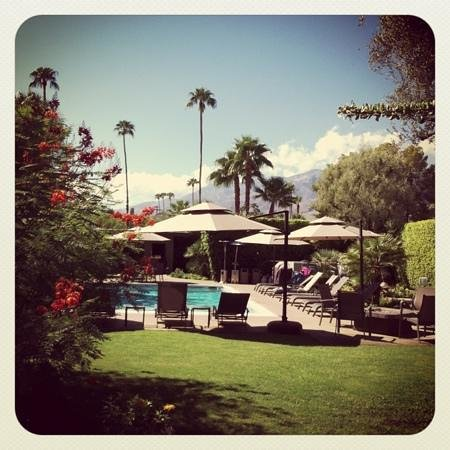 Desert Riviera Hotel: Palm Springs at its very best!