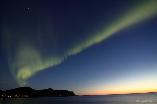 Ramberg Gjestegard: Aurora seen from the beach bordering the camp site