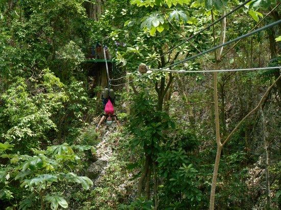 Rainforest Adventures: Ziplining... upside down!