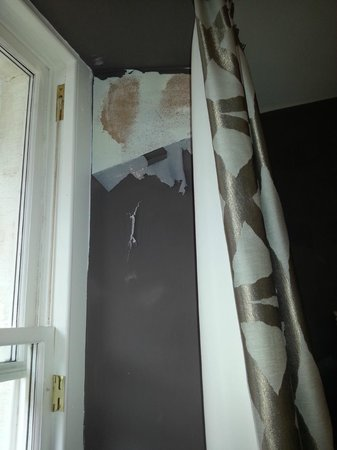 Capital Residence : Room 8 - peeling wallpaper due to damp