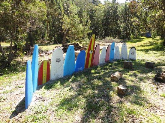 Surfaris Surf Camp Lodge: Gardens