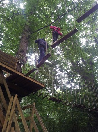 Go Ape at Leeds Castle: Up in the trees