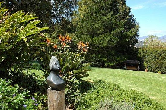 Golden Hill Guest House & Tours: Garten