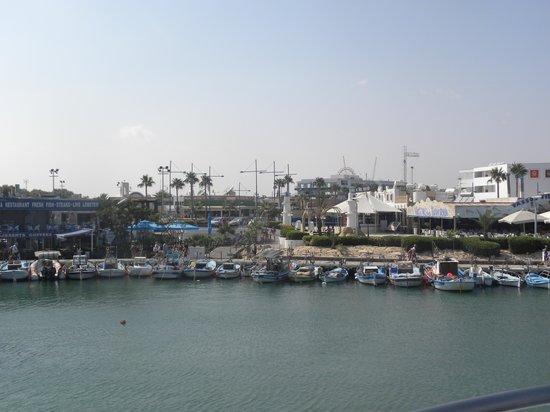Alexia Hotel  Apartments: porto