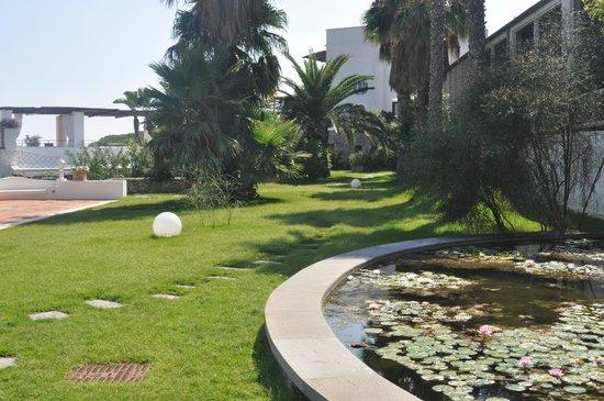 Garden & Villas Resort: Laghetto con ninfee