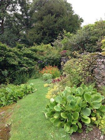 Wood House : Garden