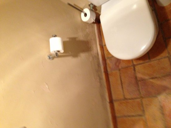 Mas Salvi Hotel : Bathroom renovated ???
