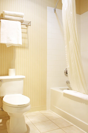Rogue Regency Inn: guest bathroom