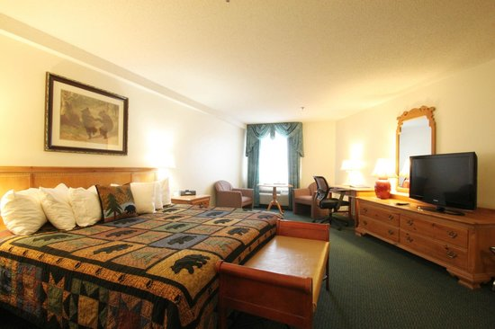 Black Bear Inn and Conference Center: King Room
