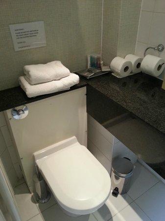 Staunton Hotel: Baño