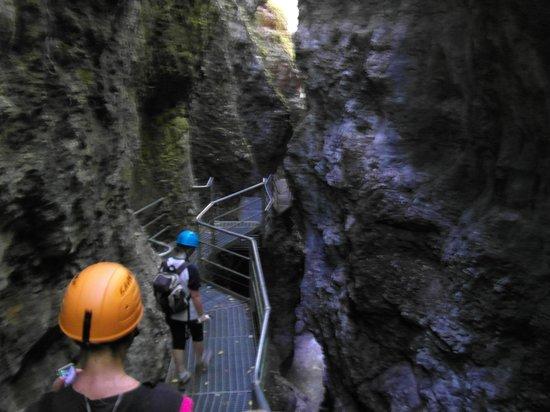 Parco Fluviale Novella : Passerella nel Canyon