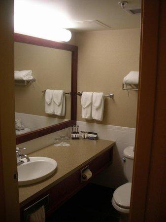 Explorer Hotel: The bathroom
