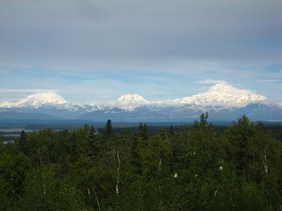 Talkeetna Alaskan Lodge : yes our room with a view!
