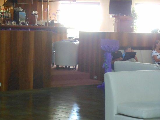 Hotel du Parc: leggio bar