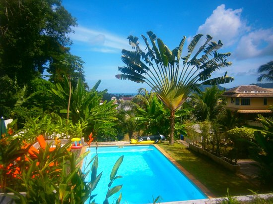 Ocean View Phuket Hotel: superbe jardin tropical