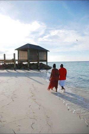 Sandals Royal Bahamian Spa Resort & Offshore Island: Snapshots